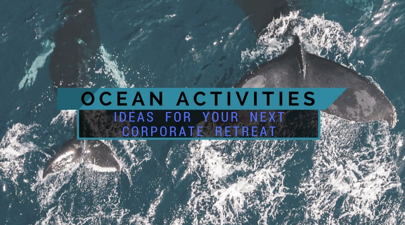 Best Ocean Activity Ideas For Your Next Corporate Retreat