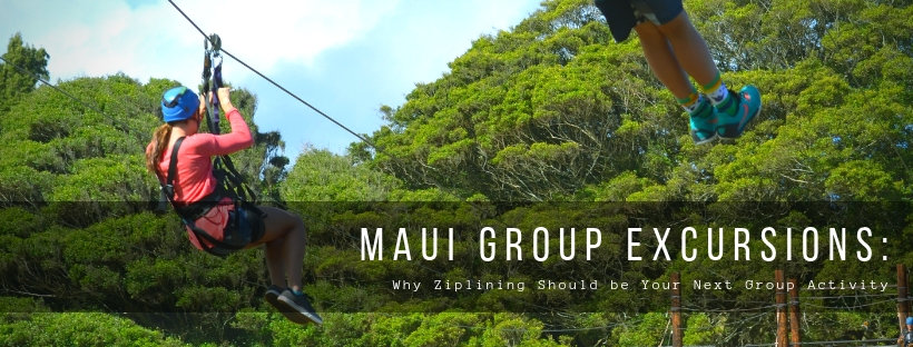Why Ziplining Should be Your Next Group Activity