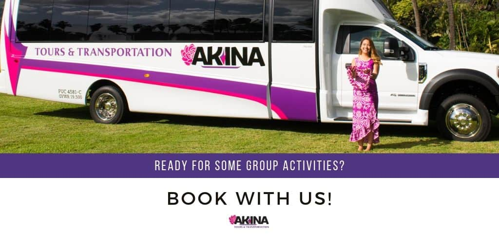Ready for Some Group Activities? Book Shuttle Service With Akina Tours & Transportation!