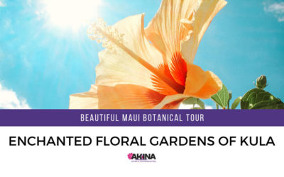 Beautiful Maui Botanical Tour at Enchanted Floral Gardens of Kula